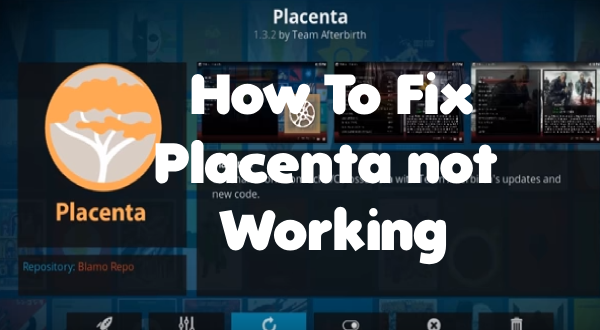Placenta not working